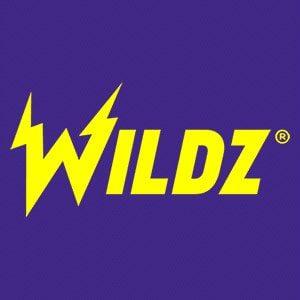 Wildz Casino 2020 Anbieter Logo.
